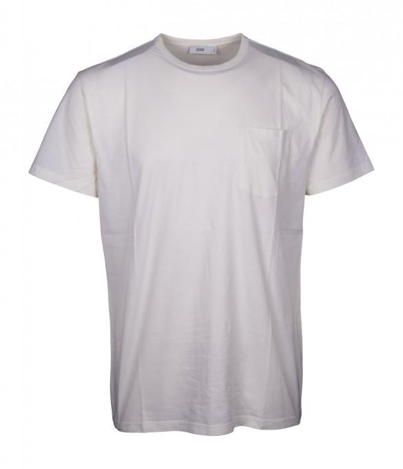 CLOSED Herren T-Shirt 85909 lime sorbet